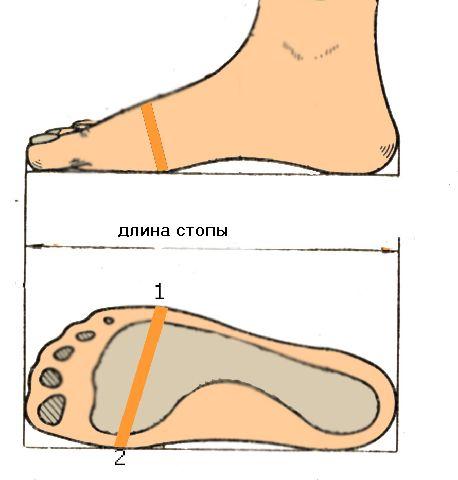 Женская обувь из Италии Каталог итальянской обуви